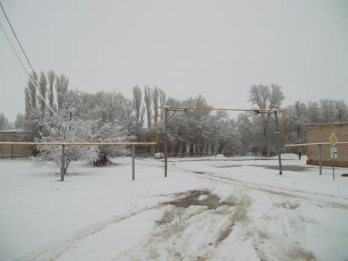 SAM 3364 зима вернулась 13.03.2019